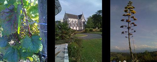 Pau - blogg